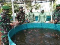 Danrem 071/Wijayakusuma Apresiasi Budidaya Ikan Air Tawar Sistim Bioflok